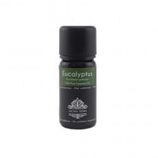 Eucalyptus Aroma Essential Oil 10ml / 30ml
