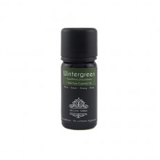 Wintergreen Aroma Essential Oil 10ml / 30ml