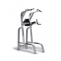 LEXCO Chinning /Dipping Hip Flexor Machine - LS-210