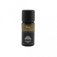 Pine Aroma Essential Oil 10ml