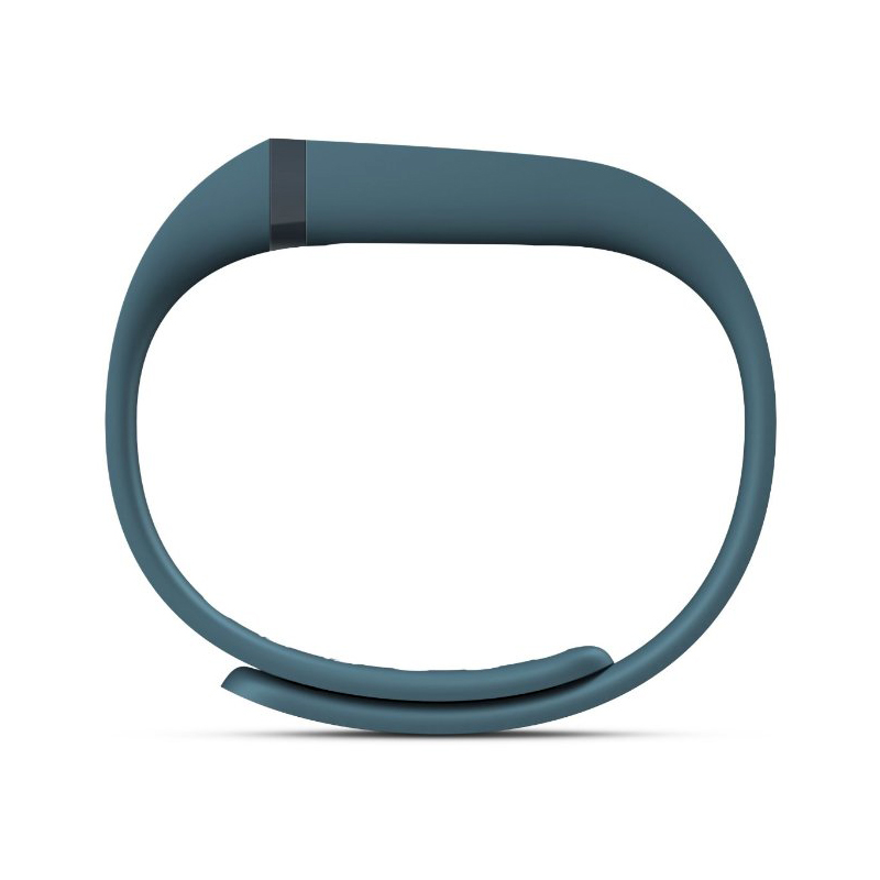Fitbit Flex Slate price in UAE | Dubai, Abudhabi, Sharjah
