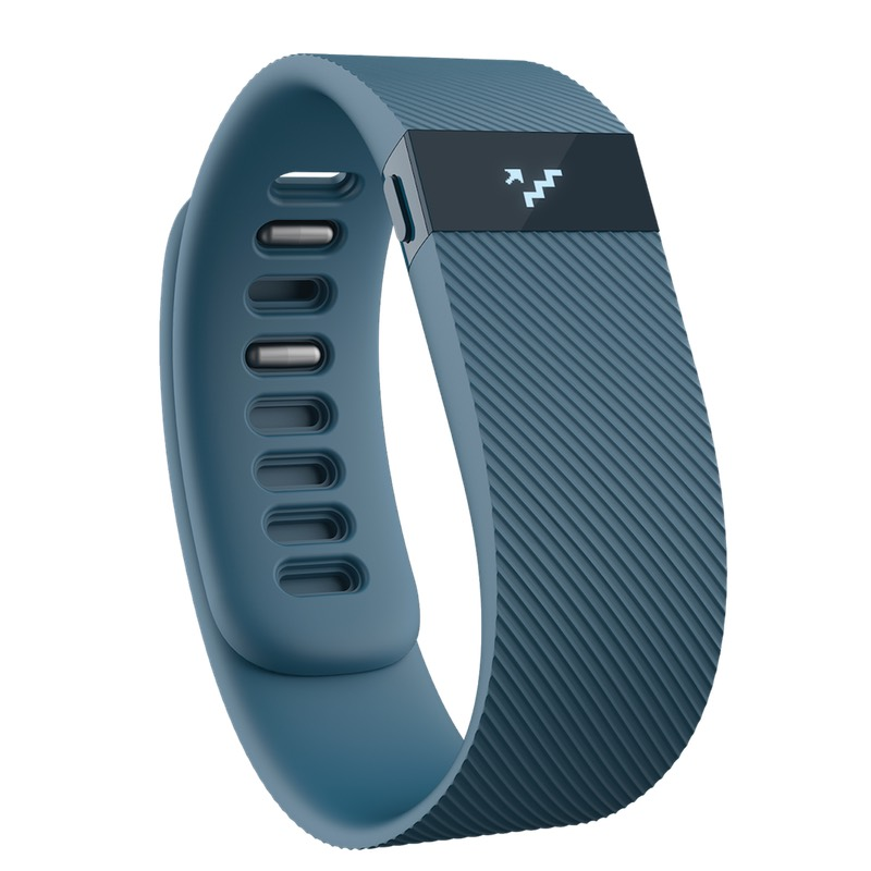 FitBit Charge - Small Online Price in UAE