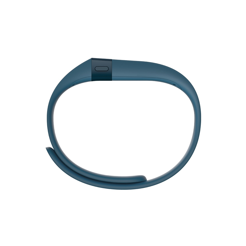 Fitbit Charge Slate Large in UAE