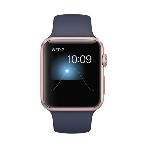 Apple Watch Series2 42mm Online Price Uae