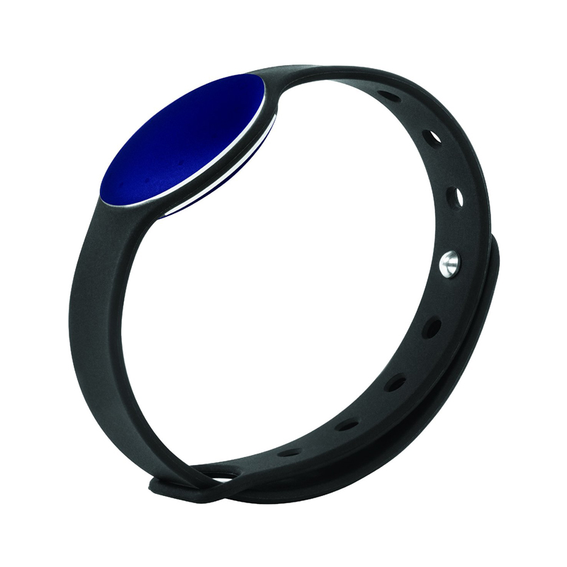 Best Price For Fitness Band in Abu Dhabi