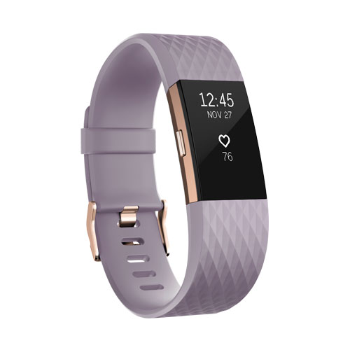 Fitbit Charge 2 Lavender Rose Gold Special Edition Large Price Dubai