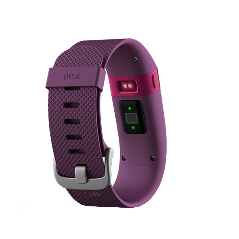 Fitbit Charge HR Plum Price in UAE