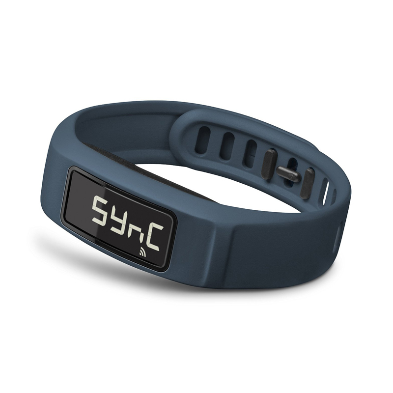 Garmin Vivofit 2 Online Price in UAE